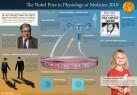 Nobelpriset i fysiologi eller medicin 2010 – poster